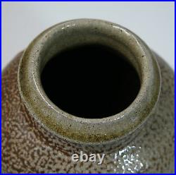 Phil Rogers studio pottery lugged salt glaze bottle vase