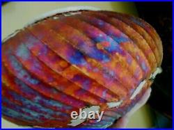Raku Pottery Vase Bruce Odell Rainbow Iridescence 2018 Louisiana